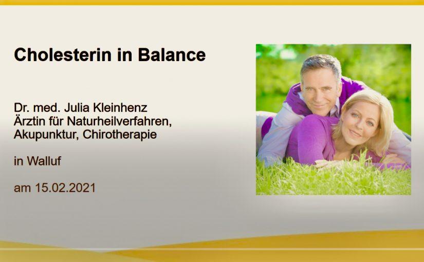 Screenshot Webinar Cholesterin in Zusammenarbeit mit Luvos Heilerde